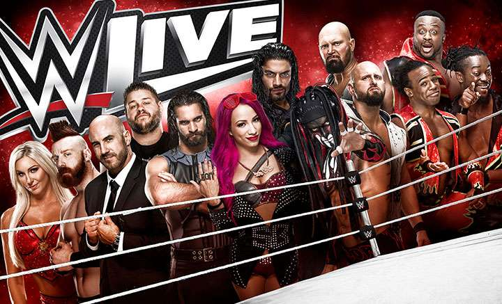 WWE set to hit South Africa in 2018!