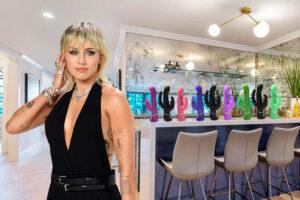 Miley Cyrus Vibrators